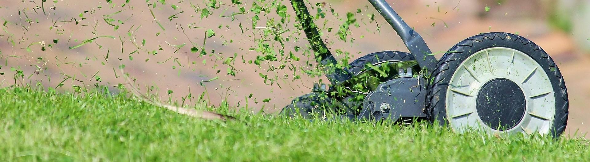 Matériel de désherbage - Green Online